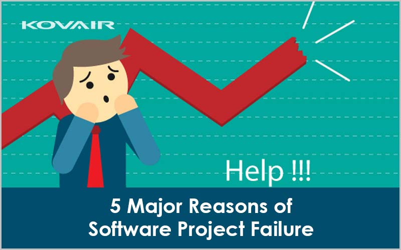 software project failure