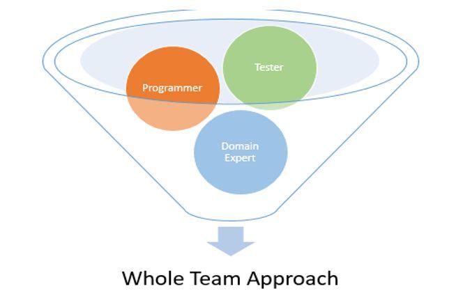 Whole Team' strategy