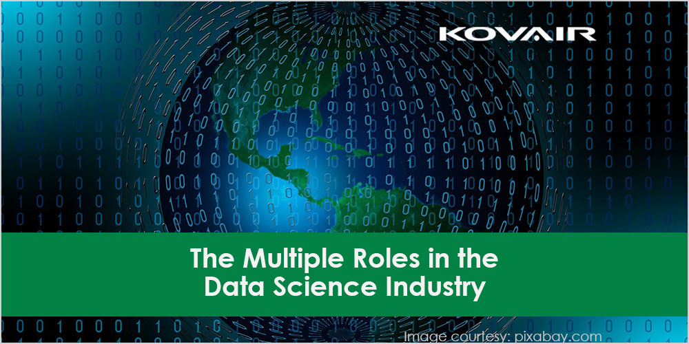 The Multiple Roles in the Data Science Industry