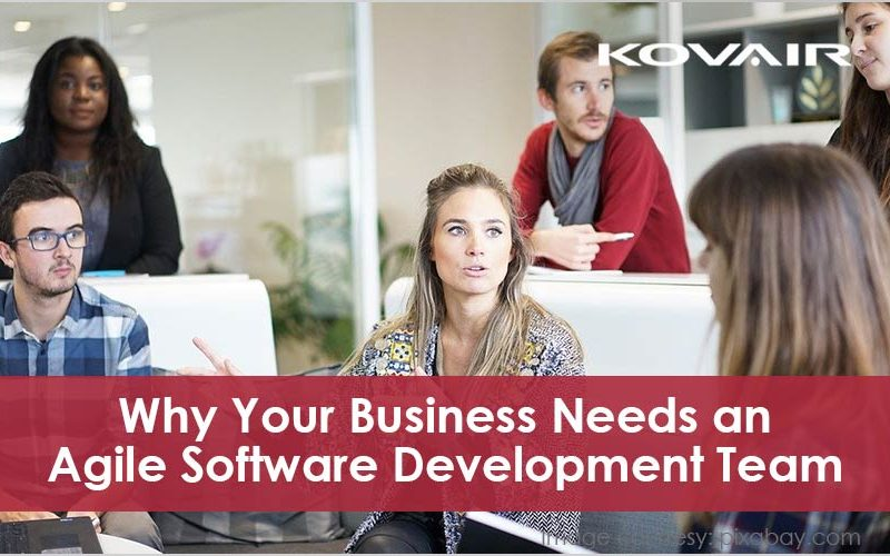 Business Needs an Agile Software Development Team