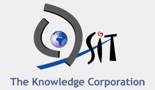 QSIT Logo