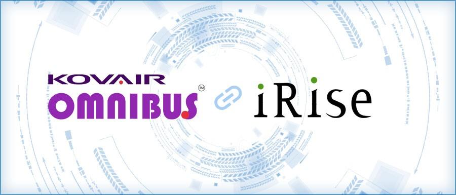 iRise Integration